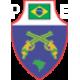 """ADESIVO DE METAL INOX """"PE BRASIL"""" TAMANHO 5X4 CM PARA COLAR EM QUALQUER SUPERFICIE"""